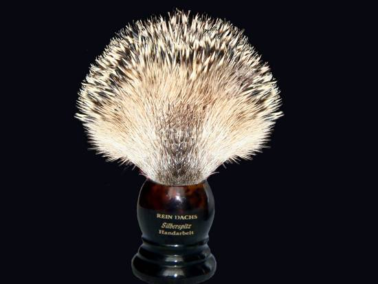 Hedgehog Brush (edited)