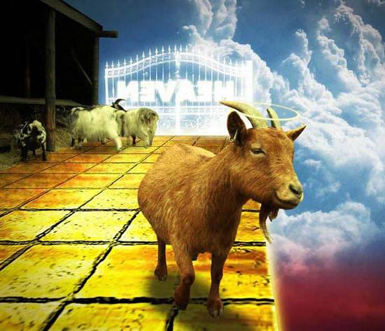 Goats Go To Heaven