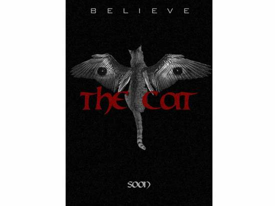 The Cat Poster