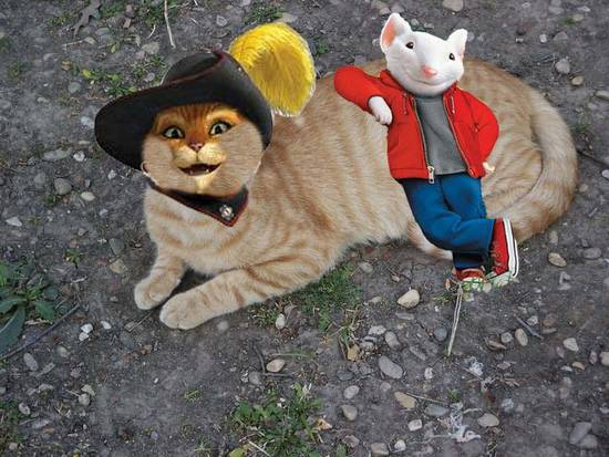 Puss with Stuart Little