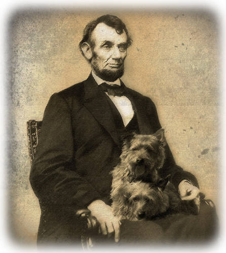 Lincoln's Lapdogs