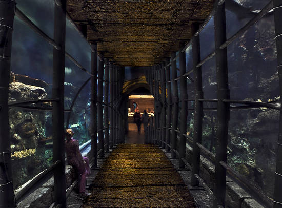 Aquarium Bridge