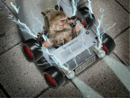 Electric mouse car