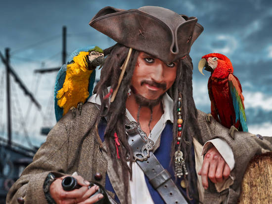 Sparrow and his parrots