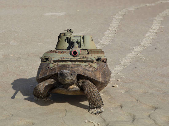 Main Battle Tortoise