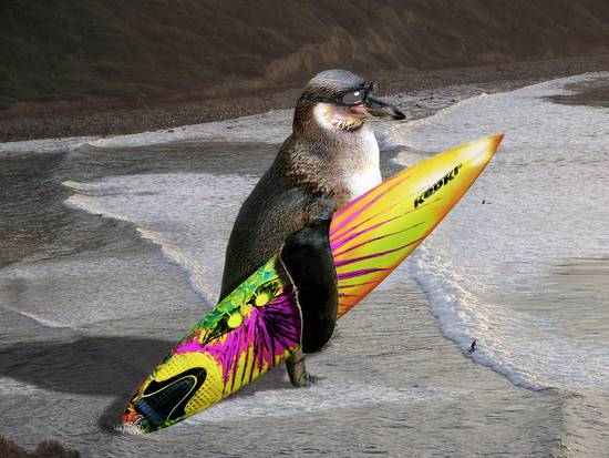 Giant Penguin Surf Dude