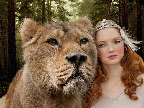 Lily and the Lion