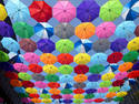 Art Umbrellas