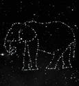 Elephantum Constellation